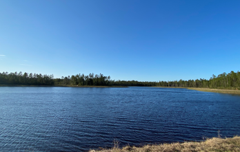 Settler's Pond Amenity at Nocatee